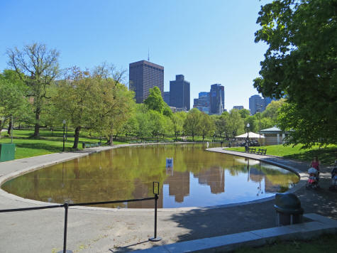 Frog Pond in Boston MA